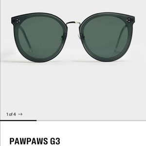 New Gentle Monster Sunglasses in PawPaws G3
